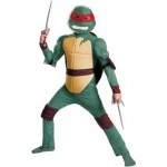 162316394_teenage-mutant-ninja-turtles-classic-muscle-costume-boy-